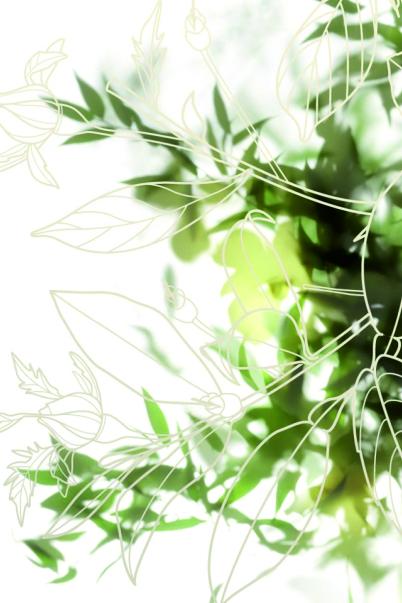 Aura Botánica